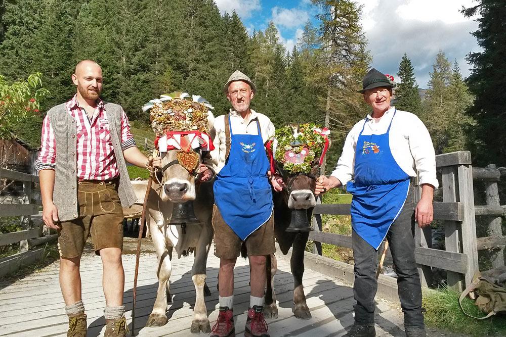 almabtrieb-huber-alm-ritorno-bestiame-malga-pasture-lodge
